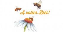 A-voller-Bléi_website